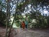 Campamento Kawi Merú (Wguayana) Tags: venezuela bolívar gran sabana salto kawi sendero camino trail nature