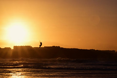 ill wind!! (skippyjon2010) Tags: kite surfer kitesurf kitesurfer portrush surf wind storm sea ocean atlantic atlanticocean sunset sun sha shadow