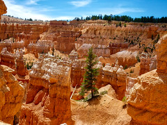 Bryce Canyon National Park (Leguman vs the Blender) Tags: canyon utah usa national