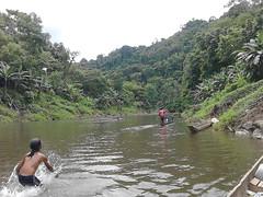 Miljöbild floden Buey i Chocó (KristnaFredsrorelsen) Tags: kristnafredsrörelsen swefor buey chocó colombia