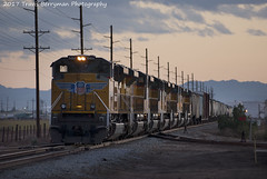 El Centro to West Colton manifest with 7 new Ace's. (Travis Berryman) Tags: unionpacific beaumonthill uprr upyumasub desertrailroading