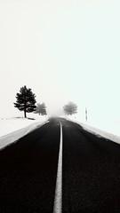 d e c i s i o n i s m i (swaily ◘ Claudio Parente) Tags: laquilaabruzzonikon abruzzo neve swaily nebbia fog