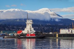 Winter Afternoon (Peyton Liscomb) Tags: tug sea reliance pusher seaspan hawk tractor 5501 barge 500 crowley atb articulated grouse mountain burrard inlet port vancouver snow winter