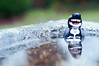 A cold soak (16:365:365) (Lost Star) Tags: 365the2017edition 3652017 day16365 16jan17 lego orca batman minifigures toyphotography
