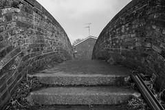 Bridge (Number Johnny 5) Tags: tamron d750 nikon bridge noir mundane alley urban alleyway monochrome walls banal black boring bw 2470mm steps white