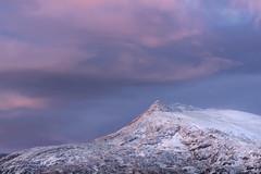 Winter Coat (Russ Barnes Photography) Tags: