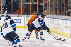 "Missouri Mavericks vs. Wichita Thunder, February 3, 2017, Silverstein Eye Centers Arena, Independence, Missouri.  Photo: John Howe / Howe Creative Photography • <a style=""font-size:0.8em;"" href=""http://www.flickr.com/photos/134016632@N02/32591262891/"" target=""_blank"">View on Flickr</a>"