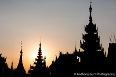 Sunset at Shwedagon Pagoda in Yangon, Myanmar (AnthonyGurr) Tags: shwedagon pagoda yangon gold ornate buddhist religious site decorative myanmar burma sunset lowsun silhouette anthonygurr