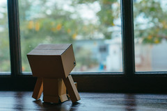 DSC06801.jpg (Jia-Wei Liang) Tags: pingtung cafe 屏東 咖啡 sony a7 2870mm danboard 阿愣 ダンボー 窗戶 wood