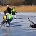 "Pondhockey 2017 • <a style=""font-size:0.8em;"" href=""http://www.flickr.com/photos/44975520@N03/32993955576/"" target=""_blank"">View on Flickr</a>"
