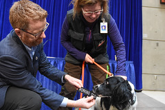 Angus and the K9 Infection Prevention Team working at VGH (BC Gov Photos) Tags: bcgovernment britishcolumbia bc healthcare vancouvergeneralhospital health infection dogs hospital