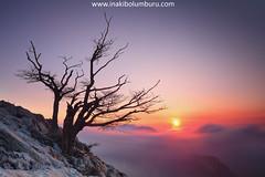 EGUZKIAREN ZAIN (Obikani) Tags: sunrise tree sun clouds mountain color light beauty serene amazing landscape alavavision canonikos