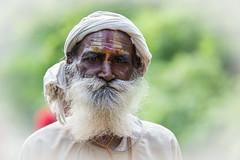 age speaks (durgeshnandini) Tags: india indian traveller experience aged wisdom hindu hinduism jaipur tilak galtaji