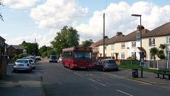 SCC Bus Review 2015 - the last Bear Buses 590 (bobsmithgl100) Tags: 2 bus last pointer surrey journey dennis dart s110 slf plaxton egk hortonroad stanwellmoor s110egk route590 bearbuses