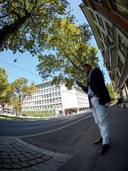 232/365: Trees (haslo) Tags: street blue trees sky green buildings schweiz switzerland distorted candid olympus fisheye bern leaning omd em1 eigerplatz