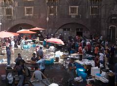 DSC03399.jpg (mauriziochialastri) Tags: mercato catania sicilia pesce mercatopesce