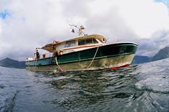Knoydart-201508-LochHourn-RubhaRuadh-11-MaryDoune (Tony J Gilbert) Tags: scotland nikon marine underwater isleofskye diving knoydart doune mallaig d300 underwaterphotography soundofsleat smallisles knoydartpeninsula wwwdouneknoydartcouk