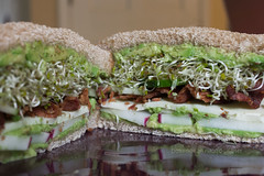 Sprouts - 6 Days (dmoranphotog) Tags: food cheese bread lunch avocado bacon cucumber plate sandwich radish sprouts fiestaware alfalfa provelone sproutpeople biselblog