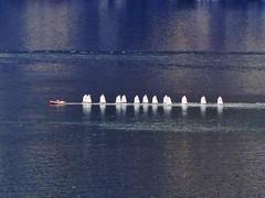 Lake Garda (Martin M. Miles) Tags: italy johnnycash trentino lakegarda altoadige southtyrol lagodigarda gardasee sailingboat suedtirol trentinoaltoadige trentinosuedtirol