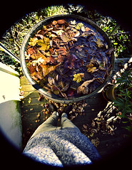 Me and waterbarrel full of leaves (Andreas Mezger - Art Photography) Tags: leaves lens nikon extreme wide colourful 12mm fx leav