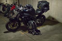 IMG_6862.jpg (waz0wski) Tags: triumph motorcycle speedtriple