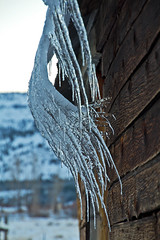 Weather art (trifeman) Tags: california november autumn snow fall ice weather canon sierra sierranevada tamron icicles t3i hwy49 loyalton sierravalley 2015 sierracounty tamron18270mm