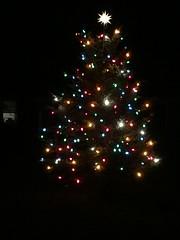 Operation Linus 2015 (JeffCarter629) Tags: ge c9 generalelectric vintagechristmas vintagechristmaslights generalelectricchristmas gechristmas gechristmaslights generalelectricchristmaslights