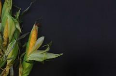 clarity-corn (verbicpetrina) Tags: breakfast corn calcium cornflakes protein claritymedspa