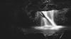 relentless.... (scott morgan images) Tags: australia bw brisbane cave final naturalbridge photomatixprohdr springbrooknationalpark tbp waterfall