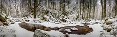Winterlandschaft am Geroldsauer Rundweg