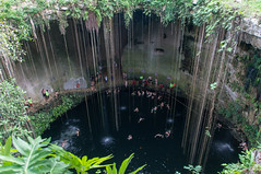 Cenote Ik Kil (Stephen T Slater) Tags: cenoteikkil mexico piste water yucatanpeninsula bathing hole lake pond roots sinkhole swim yucatán mx
