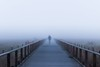 Into The Marsh (Rob Pitt) Tags: wooden boardwalk burton marshes arty fog foggy wirral cheshire deeside point blur morning mist misty 750d rob pitt photography