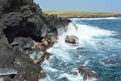 Ka Lae, Hawaii (David A's Photos) Tags: ka lae coast line photography january 2017 hawaii big island lava tube littoral cone