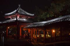 170106200307_A7s (photochoi) Tags: guilin china travel photochoi 桂林 桂林夜景 兩江四湖