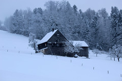 House in the Snow (Rolf-Schweizer) Tags: house snow schnee eis ice flickr artphotography art appenzell artist appenzellerland auffrischen appenzellertourismus rolfschweizer rolfschweizerfotografie rolfschweizerphotography thechurchofjesuschristoflatterdaysaints toggenburg job jobseeker keystone kunst kirchejesuchristiderheiligenderletztentage naturephotography nature natur neckertal taxi swiss schweiz switzerland stgallertagblatt suisse svizzera sky schweizerischerbauernverband silence sunset svizra