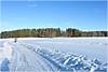 Winterwanderung (mayflower31) Tags: winter wanderung weg path walking schnee snow himmel sky bäume trees