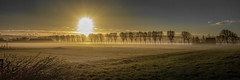 Sun (Jorden Esser) Tags: middendelfland farm fence goldenlight landscape panorama sunrise trees