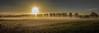 Sun (Jorden Esser) Tags: middendelfland farm fence goldenlight landscape panorama sunrise trees