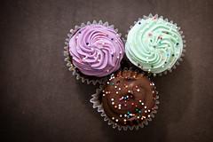 Cupcakes (MorboKat) Tags: toronto thebeaches thebeach food cupcake baking cake icing sprinkles cooking product baked bakedgoods minicupcake mini purple green chocolate chocolatecupcake yummy delicious dessert tasty