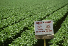 Pruitt chooses not to ban pesticide after scientists find ne… (Omnicrown) Tags: geekcallers wordpress applying agriculture farm hazard agriculturalfield danger countryside crop ruralscene celery nobody ontheedgeof warningsign pesticide safety chemical salinasvalley indicating farming post row rows warn applied dangers indicate warnings posted unspecified