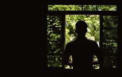 Em busca de um aventura (Angelohdf) Tags: verde green luz nature vidro pessoa natureza sombra janela f fora aventura foco pensamento distante
