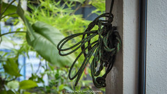 Blind Cord (Theen ...) Tags: road blue red white green cord lumix open blind pillar rope row shade tropical shops greenery penang verandah theen