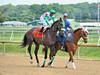 "2015-08-23 (52) r2 Roimes Chirinos on #7 Tallow (JLeeFleenor) Tags: photos photography md marylandhorseracing laurelpark jockey جُوكِي ""赛马骑师"" jinete ""競馬騎手"" dżokej jocheu คนขี่ม้าแข่ง jóquei žokej kilparatsastaja rennreiter fantino ""경마 기수"" жокей jokey người horses thoroughbreds equine equestrian cheval cavalo cavallo cavall caballo pferd paard perd hevonen hest hestur cal kon konj beygir capall ceffyl cuddy yarraman faras alogo soos kuda uma pfeerd koin حصان кон 马 häst άλογο סוס घोड़ा 馬 koń лошадь outside maryland"
