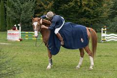 DSC01951_s (AndiP66) Tags: springen derby wohleiberg derbywohleiberg bern samstag saturday 3oktober2015 2015 oktober october pferd horse schweiz switzerland kantonbern cantonofbern concours contest wettbewerb horsejumping springreiten pferdespringen equestrian sports pferdesport sport sony sonyalpha 77markii 77ii 77m2 a77ii alpha ilca77m2 slta77ii sony70400mm f456 sony70400mmf456gssmii sal70400g2 andreaspeters frauenkappelen ch