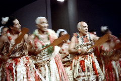 28-776 (ndpa / s. lundeen, archivist) Tags: nick dewolf nickdewolf color photographbynickdewolf 1972 1970s film 35mm 28 reel28 southpacific pacificislands oceania tradition traditional culture pacificislandculture southpacificislands suva fiji festival southpacificfestival southpacificfestivalofarts festivalofpacificarts pacificartsfestival festpac southpacificartsfestival costume costumes performance performers fijian people clothes clothing group dancers dancing stage oar paddle oars paddles man men flowers lei leis skirts ribbons flowersintheirhair flowersinhishair movement motion blurry chanting singing fiji72 blur