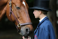 Tenderness, trust and beauty (Carol Miller/The Curious Photographer) Tags: horse groom trust coaching tenderness beautifulgirl newportri carolmiller beautifulhorse thecuriousphotographer