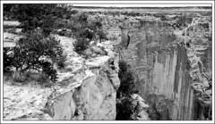 Face Rock Overlook (Sugardxn) Tags: arizona blackandwhite bw southwest photoshop canon frames az canyon frame navajo overlook canyondechelly facerock navajonation picswithframes canoneos7d canon7d sugardxn garypentin
