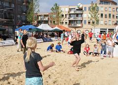Beach 2010 basis 011