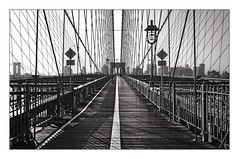 nyc#31 - Between Cables (Nico Geerlings) Tags: nyc usa sunlight ny architecture brooklyn cyclists us shadows manhattan earlymorning dumbo bridges structure bicycles cables brooklynbridge manhattanbridge pedestrians contrasts pedestrianwalkway nicogeerlings ngimages