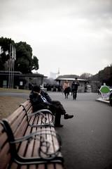 _MG_4046 (enokoji) Tags: museum tokyo ueno national  tmn